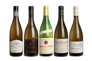 Burgundy panel tasting: Mâconnais 2016 best buys
