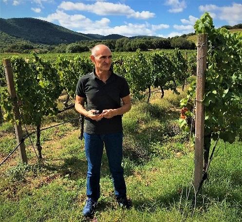 Sardinia: Experience the wines for a taste adventure