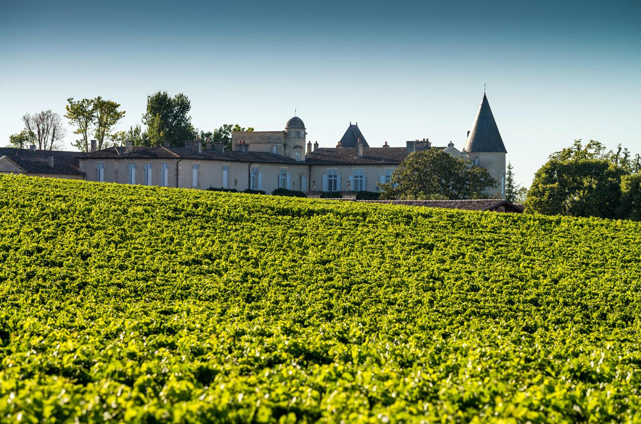 Best Bordeaux 2019 wines: Second labels