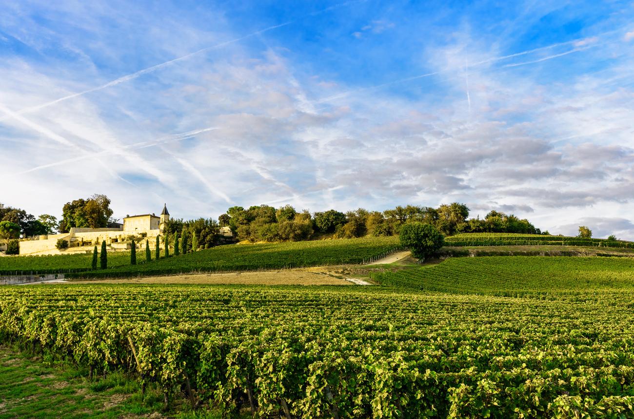 Best Bordeaux 2019 wines: Top scoring wines