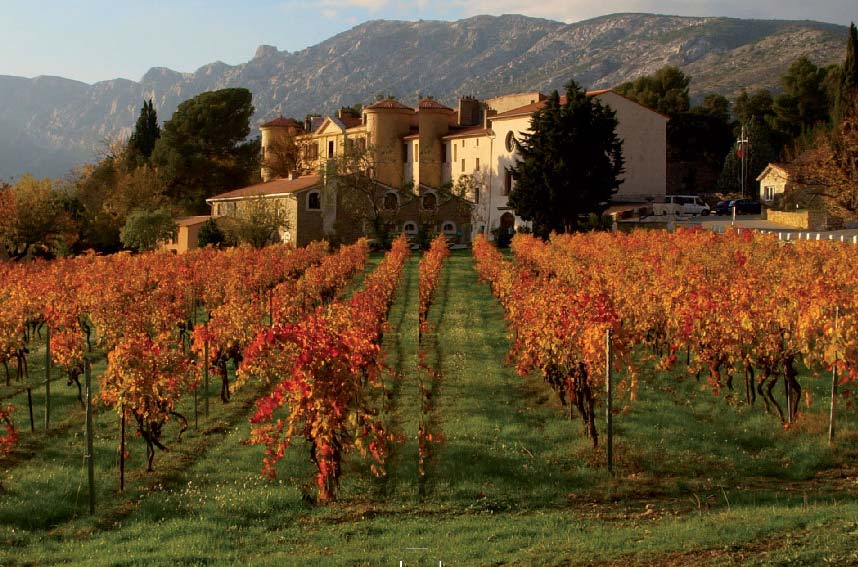 Anson: Inside the French Foreign Legion's Provence vineyard