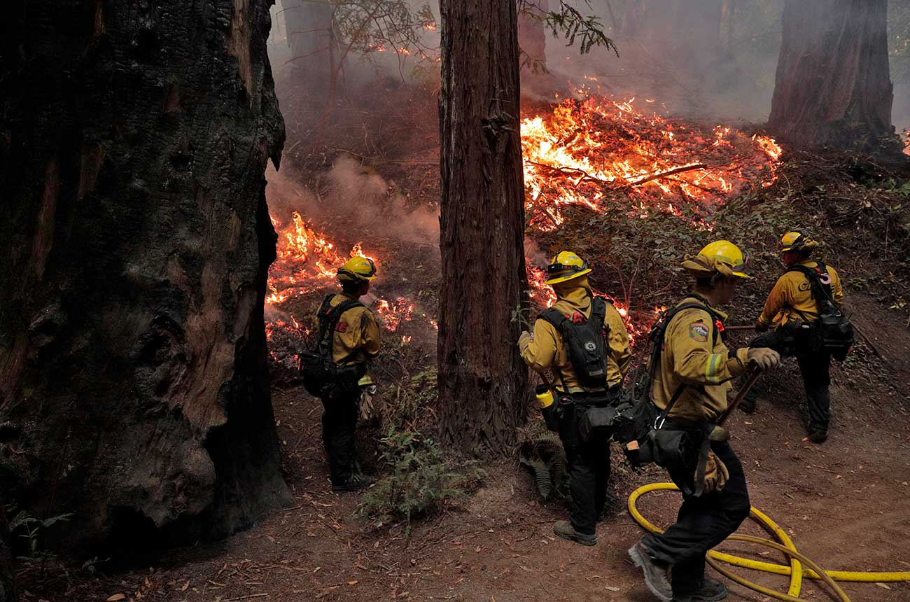 Fires in California wine country: Latest as 2020 harvest gets underway