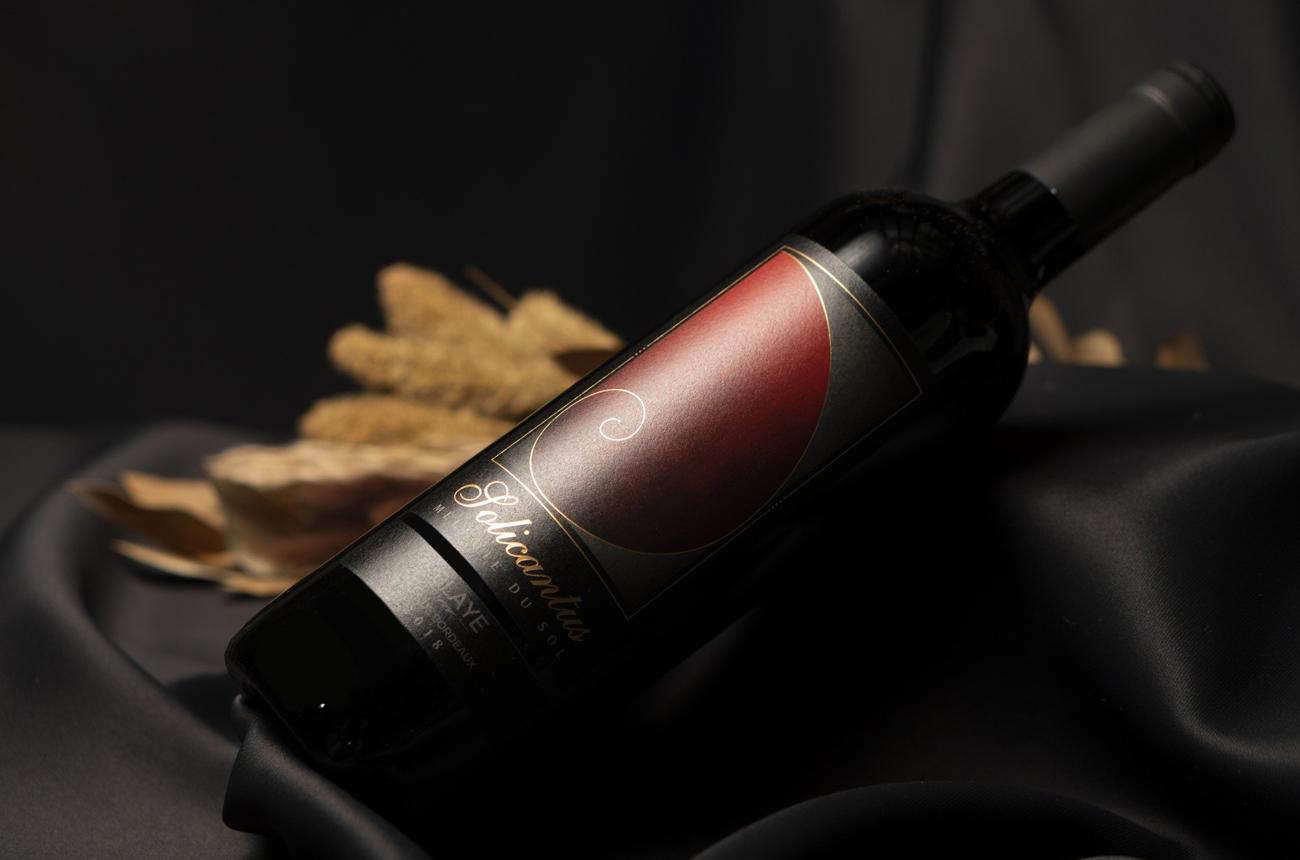 Anson: The Indian entrepreneur behind new Bordeaux wine Solicantus