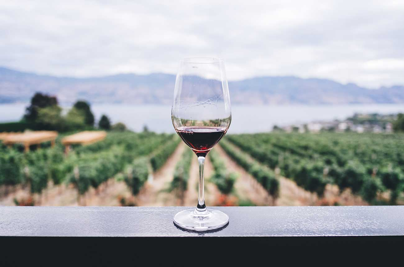 Wine Future 2021: Virtual conference addresses key issues from Covid to climate