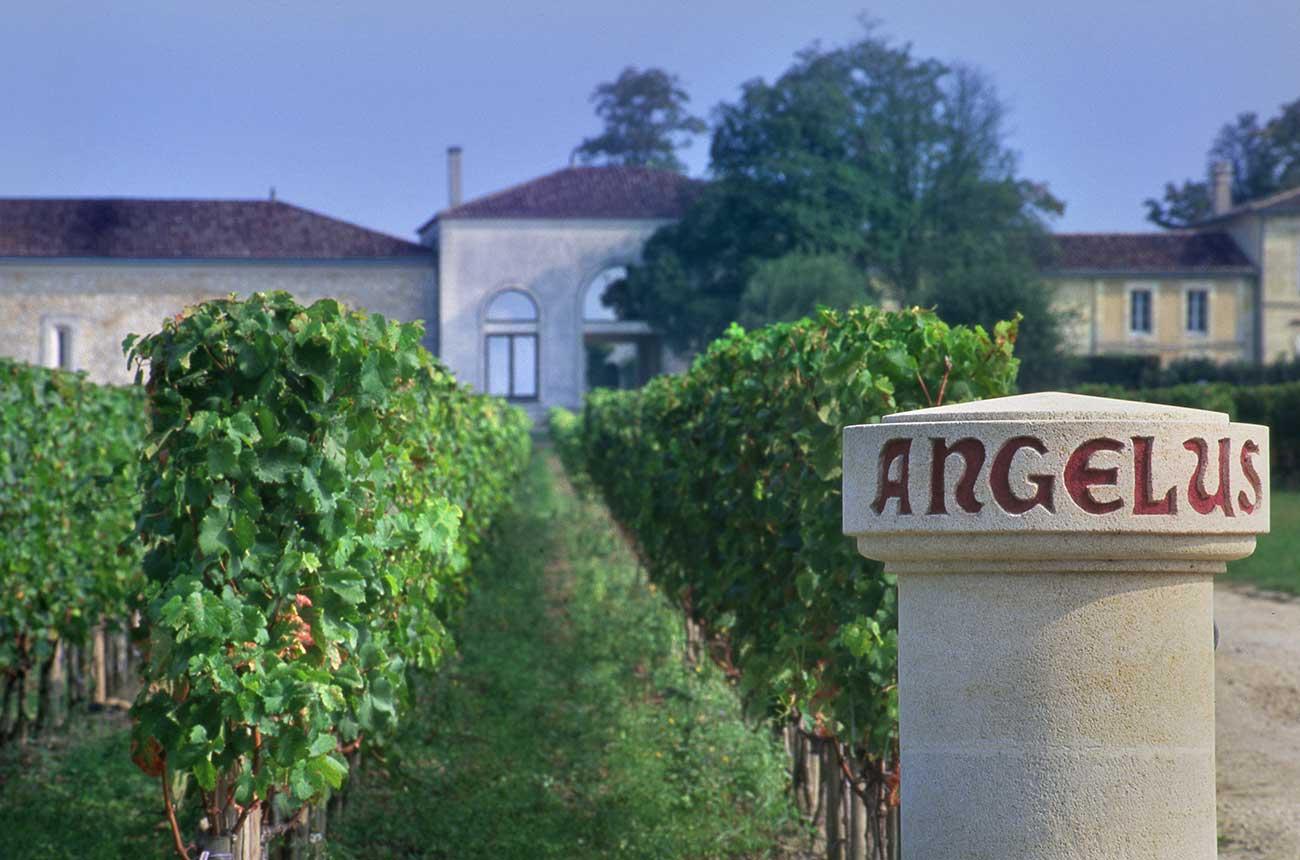 Bordeaux 2020: Angélus, Léoville Barton lead new releases