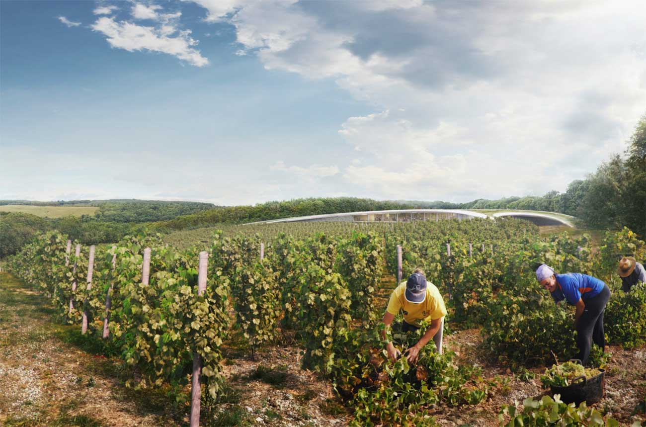 Lord Foster designs major new UK winery