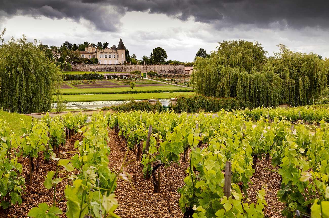 Lafite leads top traded fine wines on Liv-ex in 2021 so far