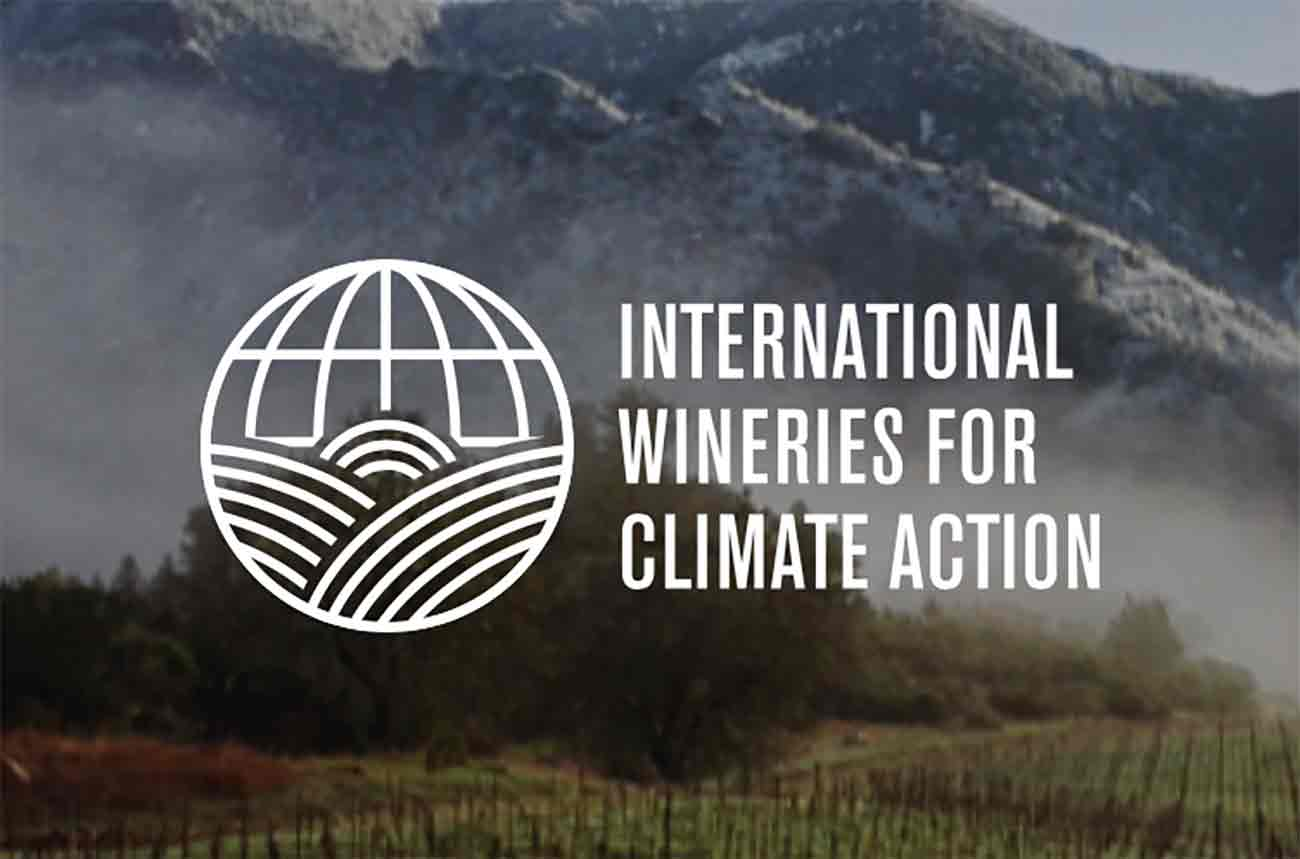 A dozen leading producers join IWCA